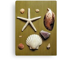 Nature Board Canvas Print
