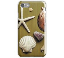 Nature Board iPhone Case/Skin