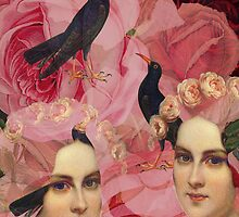 Songbirds by Suzanne  Carter