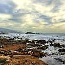 Laguna Beach Tidepools by K D Graves Photography