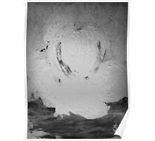 Abstract in Nature Shadows Poster