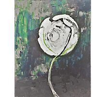 Golden Rose Acrylic Icey Green Photographic Print