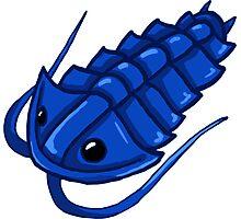 Blue Trilobite Photographic Print