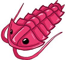 Pink Trilobite Photographic Print