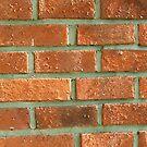 Red brick cushion by Arve Bettum
