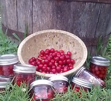 Canned Summer Cherries by SouthernQuil