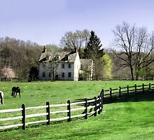 Chester County, Pennsylvania Horse Farm by Polly Peacock