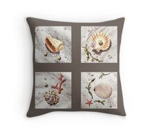 Sea Shell Collection Pillow Throw Pillow