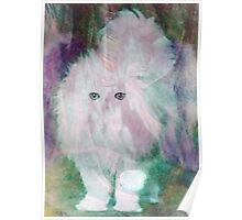Adorable Cosmic Pegasus Kitten Poster