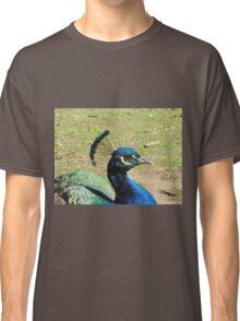 Peacock, Launceston Gorge Classic T-Shirt