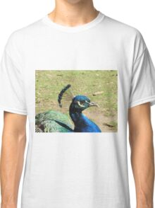Peacock, Launceston Gorge Classic T-Shirt