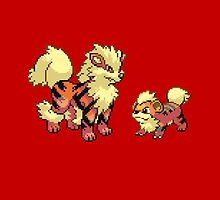 Growlithe and Arcanine V.3 by Flaaffy