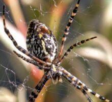 Arachnid Sticker