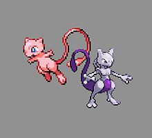 Legendary Mew Duo by Flaaffy