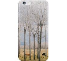 Matchstick Park iPhone Case/Skin
