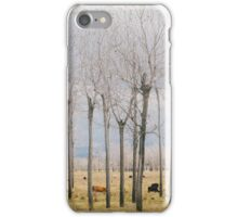 Matchstick Park iPhone Case/Skin