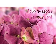 Love in bloom Photographic Print