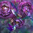 A Rose Named Violette by Carol  Cavalaris
