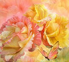 Rose - Colors Of Spring SQ by Carol  Cavalaris