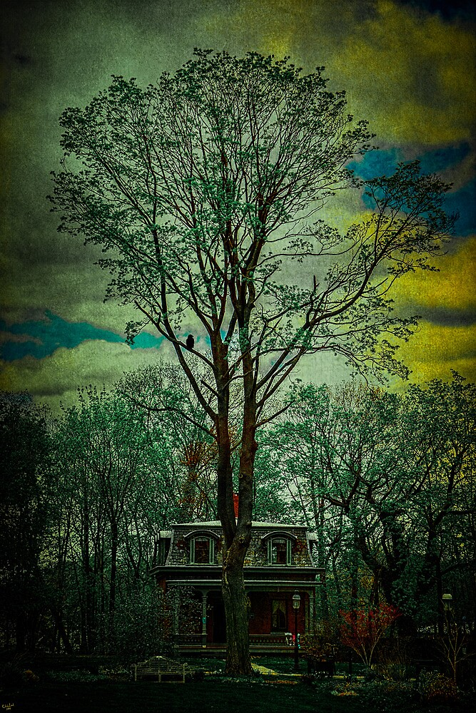 Snug Harbor Victorian by Chris Lord