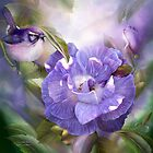 Lavender Rose - SQ by Carol  Cavalaris