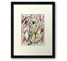 New Holland Honeyeater Framed Print