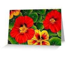 Nasturtiums in Vermillion and Yellow Greeting Card