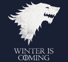 House Stark - Game of Thrones T-Shirt / Phone case / Pillow 4 by Fenx