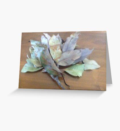 Branch of leaves wit leaf stalk Greeting Card
