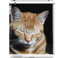 He Found Contentment iPad Case/Skin