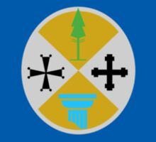 Flag of Calabria Region of Italy  Sticker