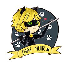 Chat Noir Photographic Print