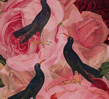 Songbirds2 by Suzanne  Carter