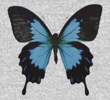 Blue butterfly One Piece - Long Sleeve