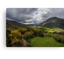 Valley Of Nant Gwynant Canvas Print