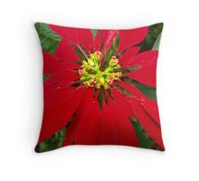 Poinciana Red Cushion ,front view. Throw Pillow
