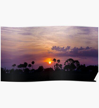 Cane Season Sunset - Ayr Poster