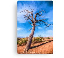 Outback Tree       GO Canvas Print