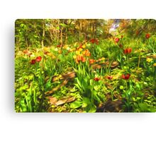 Impressions of Gardens - the Untamed Tulip Forest in Spring Canvas Print