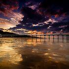 Saltburn Pier by Dave Hudspeth