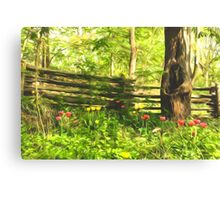 Impressions of Gardens - Colorful Tulips and a Rustic Fence Canvas Print