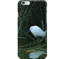 Snowy Egret Reflected in Water iPhone Case/Skin
