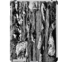RIVER BW iPad Case/Skin