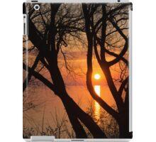 Sunrise Through the Willows - Lake Ontario, Toronto, Canada  iPad Case/Skin