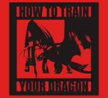 How to train your dragon toothless by entastictreeman