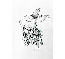 Poetic Rabbit  Photographic Print
