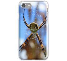 Orb Weaver Spider Against Blue Sky iPhone Case/Skin