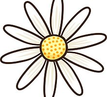 White daisy by Mhea