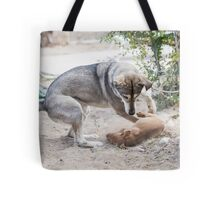 A mature dog and a puppy play in the yard  Tote Bag