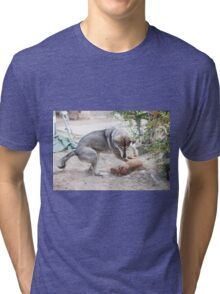 A mature dog and a puppy play in the yard  Tri-blend T-Shirt